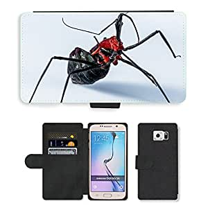 Super Stella Cell Phone Card Slot PU Leather Wallet Case // M00148748 Beetle Insect Arachnid Exotic Close // Samsung Galaxy S6 (Not Fits S6 EDGE)