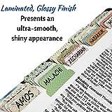Mr. Pen- Bible Tabs, 75 Tabs, Laminated, Bible