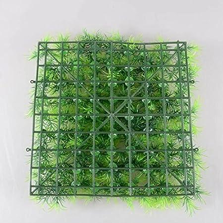 Frena la Crescita delle alghe JIALONGZI 5 Pezzi Palla Muschio pianta Viva Acquario Acquario Ornamento Bassa Manutenzione