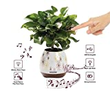 Envolve Music Flower Pot, Wireless Bluetooth Speaker, LED Light Smart Touch Music Flower Pot by, Multicolor Night Light, Play Piano Music on a real plant with colorful LED lights (Plant not included)