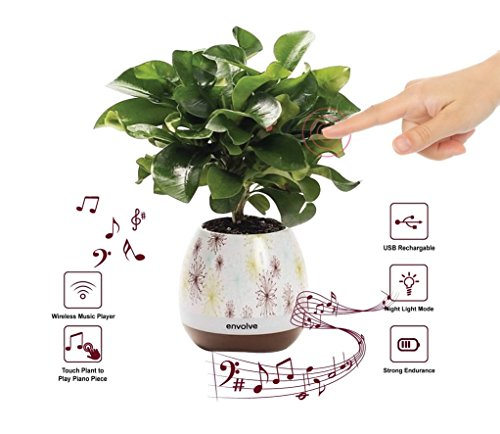Envolve Music Flower Pot, Wireless Bluetooth Speaker, LED Light Smart Touch Music Flower Pot, Multicolor Night Light, Play Piano Music on a Real Plant with Colorful LED Lights (Plant not Included) (Pot Music)