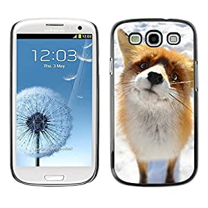Design for Girls Plastic Cover Case FOR Samsung Galaxy S3 Cute Arctic Snow Fox Orange Goofy Animal OBBA