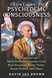 frontiers of psychedelic consciousness conversations with albert hofmann stanislav grof rick strassman jeremy narby simon posford and others