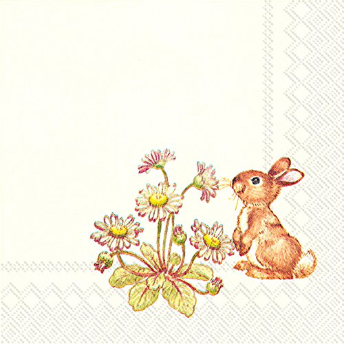- Celebrate the Home Spring 3-Ply Paper Cocktail Napkins, Snoopy Little Rabbit, 20 Count