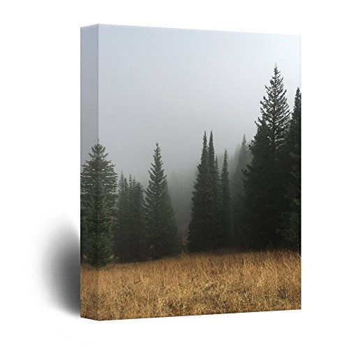 (wall26 Canvas Wall Art - Pine Tree Forest- Giclee Print Gallery Wrap Modern Home Decor Ready to Hang - 16