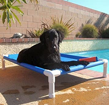 Image result for outdoor dog bed