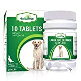 Best Dog Wormers - HerbalVet Natural Dog Dewormer Alternative for All Dogs Review