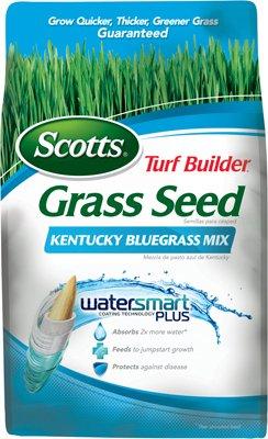 Scotts Turf Builder Grass Seed - Kentucky Bluegrass Mix