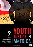 img - for Youth Justice in America book / textbook / text book