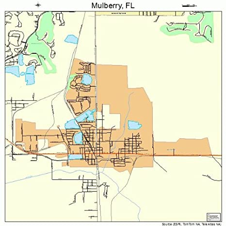 Mulberry Florida Map.Amazon Com Large Street Road Map Of Mulberry Florida Fl