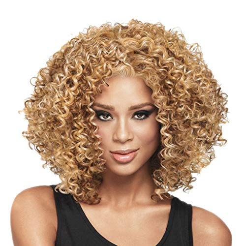 FORUU Wigs, 2019 Valentine's Day Surprise Best Gift For Girlfriend Lover Wife Party Under 5 Free delivery Fashion Rose Hair Net Full Curly Wig Bob Wave Hair Black Women Synthetic Wigs ()