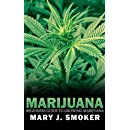 Begginers Guide To Growing Marijuana: Everything That You Need To Know About Becoming A Marijuana Grower