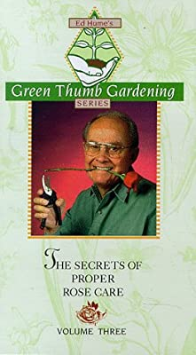 The Secrets of Proper Rose Care - The Green Thumb Gardening Series Volume 3
