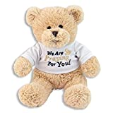 "Best FIESTA Friends Teddy Bears - ""We Are Praying For You"" 12 inch Bear Review"