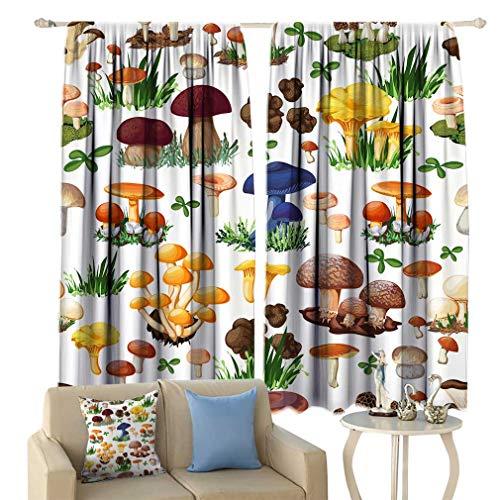 (Hydaprint Mushroom Pattern Curtains, Mushroom with Forest Wild Species Truffle Honey Fungus Cartoon Window Draperies for Bedroom 2 Panels Set, Each Panel 27.5