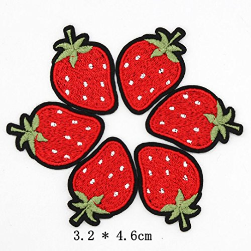 YABINA 10PC Embroidery Fruits Iron on Sew on Patches Applique for Jeans, Neckline, Clothing, Bags (Strawberry)