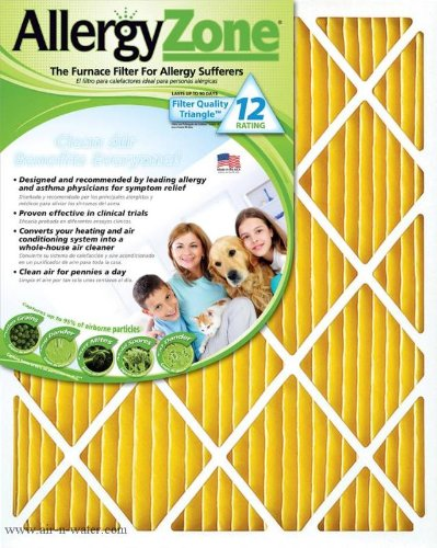 AllergyZone AZ20201 Air Filter for Allergy Sufferers, 20 x 20 x 1