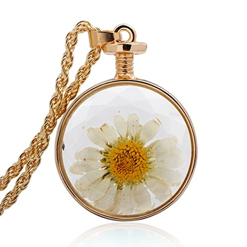 Baby Tree Car Freshener Costume (MORE FUN Retro Dried Flos Chrysanthemi Circular Glass Bottle Pendant Gold Chain Necklace,Lobster Clasp)