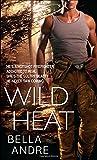 Wild Heat (Hot Shots Men of Fire)