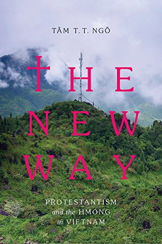 The New Way: Protestantism and the Hmong in Vietnam (Critical Dialogues in Southeast Asian Studies) by Ng T m T T