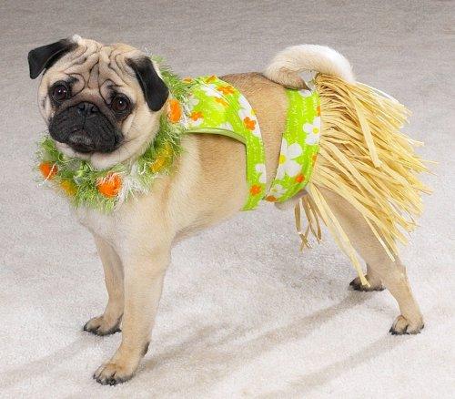 Casual Canine Hula Pup Costume (Pet Hula Costume)