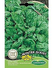 Germisem Winter Giant Spinazie Zaden 15 g