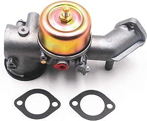 Autu Parts Carburetor for Briggs & Stratton 490499 491031 491026 with Gaskets