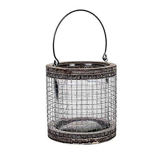 (Large Round Mesh Chicken Wire 7 inch Natural Birch Lantern Decoration with Handle)