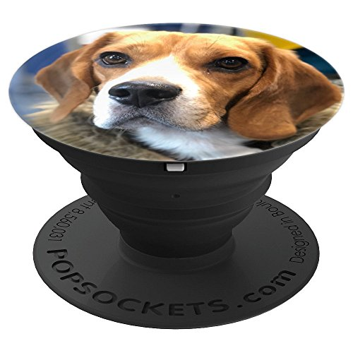 Luke Cute Beagle Face - PopSockets Grip and Stand for Phones and - Beagle Face