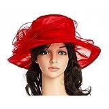 Women's Kentucky Derby Hat,Summer Fascinator Flowers Wide Brim Organza Church British Tea Party Wedding Dress Cap,Red