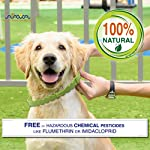 Arava Flea & Tick Prevention Collar - for Dogs & Puppies - Length-25'' - 11 Natural Active Ingredients - Safe for Babies & Pets - Safely Repels Pests - Enhanced Control & Defense - 6 Months Protection 13