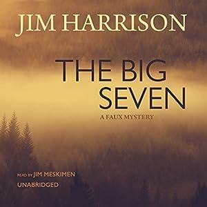 The Big Seven Audiobook