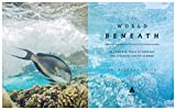 The World Beneath: The Life and Times of Unknown