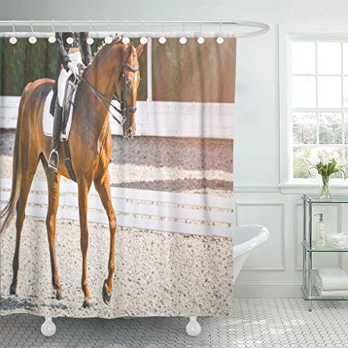 - Semtomn Shower Curtain Elegant Rider Woman and Sorrel Horse Beautiful Girl at Shower Curtains Sets with 12 Hooks 60 x 72 Inches Waterproof Polyester Fabric