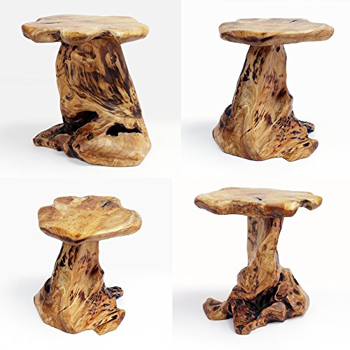 Awe Inspiring Welland Tree Stump Side Table Live Edge Stool Natural Edge Wood Side Table Accent Table 19 Tall Download Free Architecture Designs Ferenbritishbridgeorg