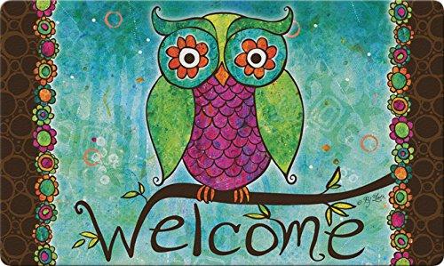 Toland Home Garden Rainbow Owl 18 x 30 Inch Decorative Floor Mat Colorful Welcome Bird Doormat