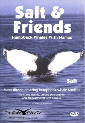 Book Whales Favorite (Salt & Friends: Humpback Whales With Names)