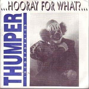 "Hooray For What 7 Inch (7"" Vinyl 45) US Smog Veil 1991"