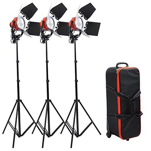 Continuous Light Kit Rolling Case