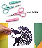 Stainless Steel Craft Detail Scissors Set with High Precision Sharp, Fine Tips and Protective Cover Idea for Paper Cutting, Scrapbooking, Sewing Crafting