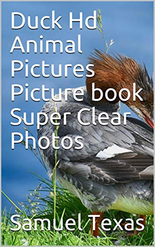 Duck Hd Animal Pictures Picture book Super Clear Photos (English Edition)