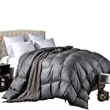 L LOVSOUL All Season Down Comforter Twin(68x90inches),Hypoallergenic Goose Down Comforter Duvet Insert with Corner Tabs,700 Fill Power,Grey Comforter