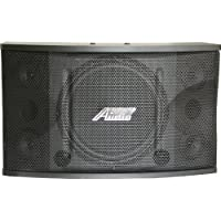 Audio2000S ASP5213 600W Full Range 12-Inch 3-Way Loudspeaker