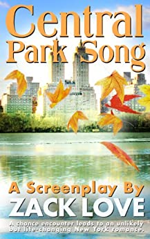 Central Park Song: An unexpected New York romance that changes everything... by [Love, Zack]