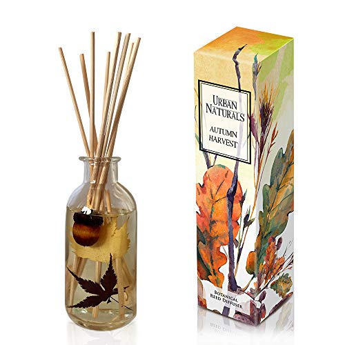 Pumpkin Home Fragrance - Urban Naturals Autumn Harvest Scented Oil Reed Diffuser | Fall Home Decor with Real Leaves & Botanicals | Creamy Pumpkin Pie, Nutmeg, Maple & Vanilla | Great Home Fragrance Gift Idea