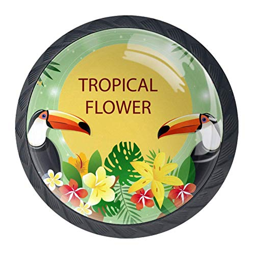 Idealiy Tropical Flower with Toucans Cabinet Door Knobs Handles Pulls Cupboard Handles Drawer Wardrobe 4pcs