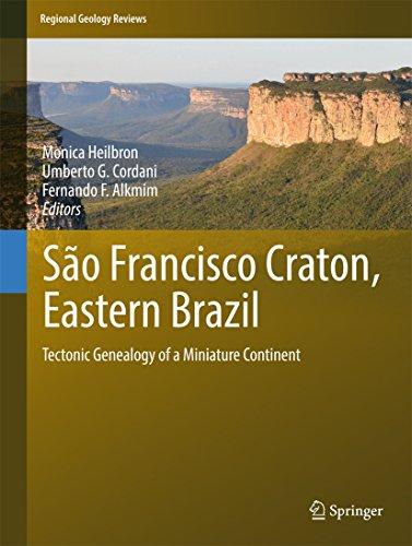 (São Francisco Craton, Eastern Brazil: Tectonic Genealogy of a Miniature Continent (Regional Geology Reviews))