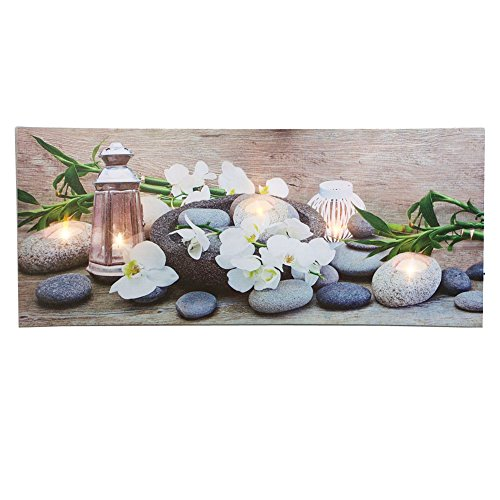 Lighted Orchid Canvas Wall Multi