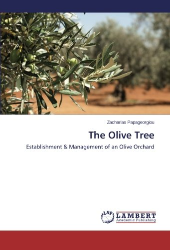 The Olive Tree por Papageorgiou Zacharias