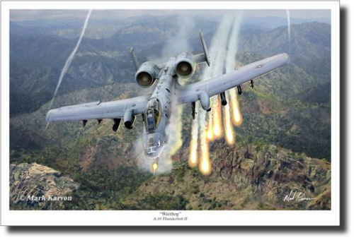 Warthog by Mark Karvon - A-10 Thunderbolt II - Aviation for sale  Delivered anywhere in Canada